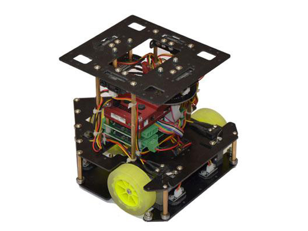 Basketball Defensive robot( KLR0101)